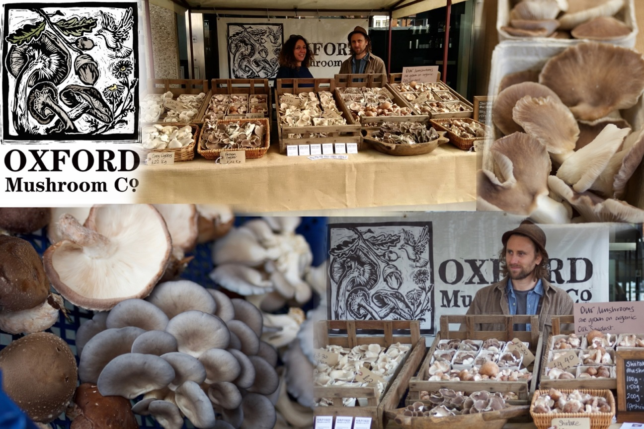 Oxford Mushroom Co collage smaller for web